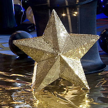 Gold Celestial Sequin Star (The Standing Hollywood Walk of Fame)