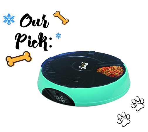 Automatic Feeder-pet gift