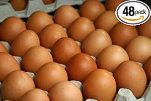 GRASS FED, NON-GMO FED FREE RANGE BROWN & COLORED CHICKEN EGGS