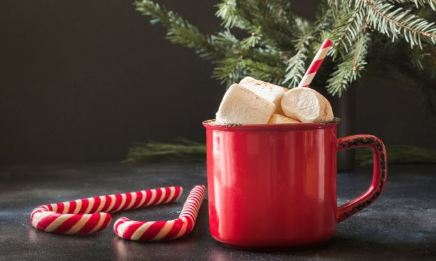 Reasons Why You Should Include a Coco and Coffee Bar to Your Christmas Feast