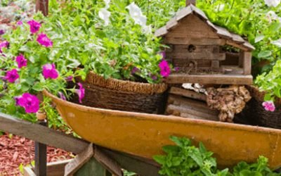 Intriguing Signs to Welcome Fairies to Your Fairy Garden