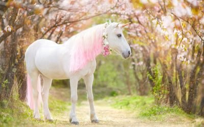 Adorable Unicorn Products You Need for Unicorn Day